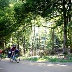 A cykle igennem skoven
